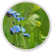 Forget-me-not. Round Beach Towel