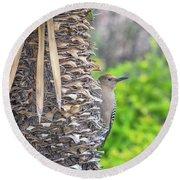 Gila Woodpecker Round Beach Towel