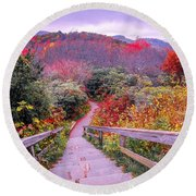 Graveyard Fields Overlook In The Smoky Mountains In North Caroli Round Beach Towel