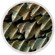 Great Hammerhead Shark Skin, Sem Round Beach Towel