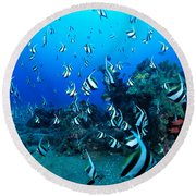 Hawaiian Reef Scene Round Beach Towel