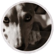 Heart You Italian Greyhound Round Beach Towel