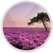 Heather At Sunset  Round Beach Towel