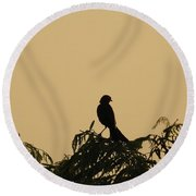 High In The Tree Round Beach Towel
