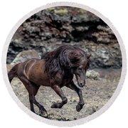 Icelandic Black Stallion, Iceland Round Beach Towel
