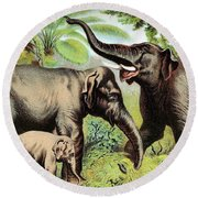 Indian Elephant, Endangered Species Round Beach Towel
