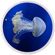 Jellyfish Round Beach Towel by Joana Kruse