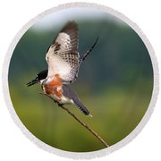 Kingfisher Round Beach Towel
