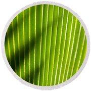 Leaf Close-up Round Beach Towel