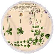 Linnaea Borealis, Linnaeuss Favorite Round Beach Towel