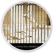 Lion Cage, Carnivore House, Philadelphia Zoo, C. 1900 Round Beach Towel