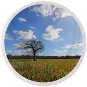 Lone Oak Tree In English Countryside Round Beach Towel