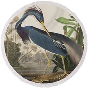 Louisiana Heron  Round Beach Towel