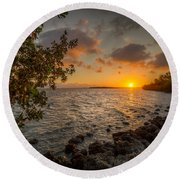 Morning At The Mangroves Round Beach Towel