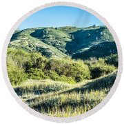 Muir Woods Forest Drive By Nature Near San Francisco Round Beach Towel