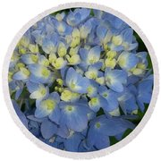 My Blue Hydrangeas Round Beach Towel