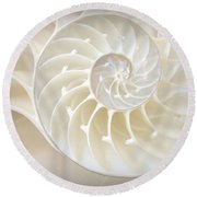 Nautilus 3by4 Round Beach Towel