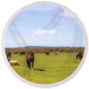 New Forest - Hampshire - Uk Round Beach Towel