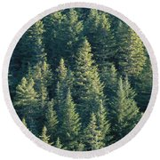 Oregon, Cascade Mountain Round Beach Towel