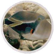 Picasso Triggerfish Round Beach Towel