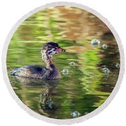 Pied-billed Grebe Bubbles Round Beach Towel