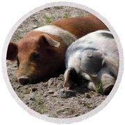 Pigs Round Beach Towel