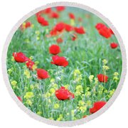 Poppy Flowers Meadow Spring Season Round Beach Towel