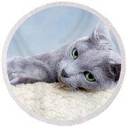 Russian Blue Cat Round Beach Towel