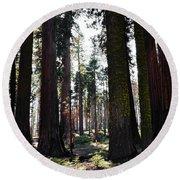 Sequoia National Park Round Beach Towel