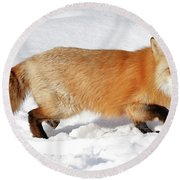 Sneaky Red Fox Round Beach Towel