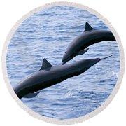 Spinner Dolphins Round Beach Towel