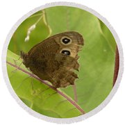 2-spotted Wood Nymph Round Beach Towel