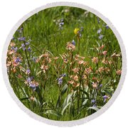 Springtime In South Africa Round Beach Towel