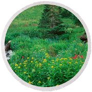 Stream And Alpine Flowers, Ouray Round Beach Towel