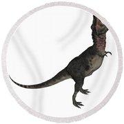 Tarbosaurus Dinosaur Roaring, White Round Beach Towel