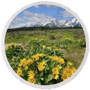 Teton Balsam Root Round Beach Towel