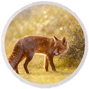 The Fox And The Fairy Dust Round Beach Towel