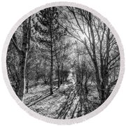 The Peaceful Forest  Round Beach Towel