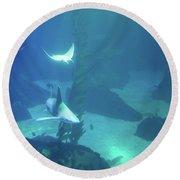 Underwater Blue Background Round Beach Towel