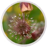 Water Avens Round Beach Towel