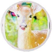 White-tailed Virginia Deer Fawn Round Beach Towel