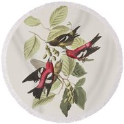 White-winged Crossbill Round Beach Towel