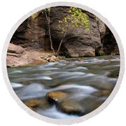 Zion National Park Narrows Round Beach Towel