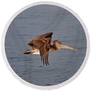 20- Pelican Round Beach Towel