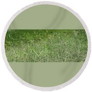 2008 Crab Grass Mead Round Beach Towel