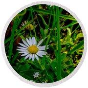 2015 08 23 01 A Flower 1106 Round Beach Towel