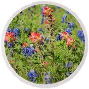 201703300-068 Indian Paintbrush Blossom 2x3 Round Beach Towel