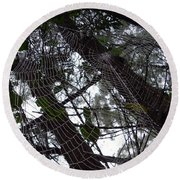 Australia - Spider Web High In The Tree Round Beach Towel