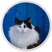 Cat On A Greek Island Round Beach Towel