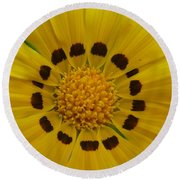 Australia - Yellow Daisy Flower Round Beach Towel